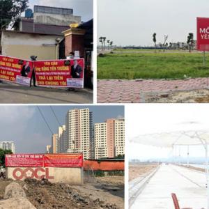 Nở rộ dự án bán lúa non, nhiều địa phương cảnh báo gấp